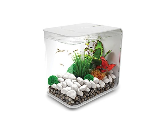 BiOrb Design Nano Aquarium Flow, 15L weiss