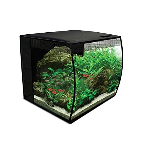 Fluval 15004 Flex Nano-Aquarium Set mit 34 Liter